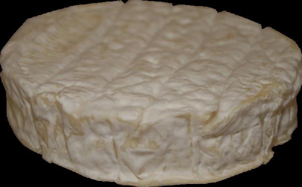 Ziegenkäse Camembert kaufen Käseladen