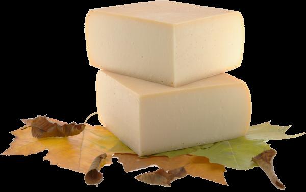 Käse Fondue online Shop Käseversand 24 Raclette Kaese