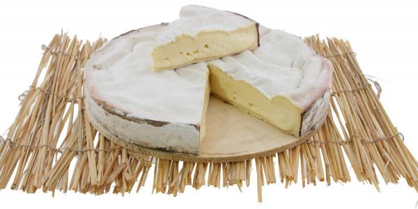 Vacherin kaufen Shop Käseladen Rohmilchkäse